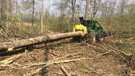 Production  Sawmilling Software Companies  - Belgium hardwood trade
