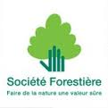 Saw Logs Consulting Companies  - SOCIETE FORESTIERE CDC