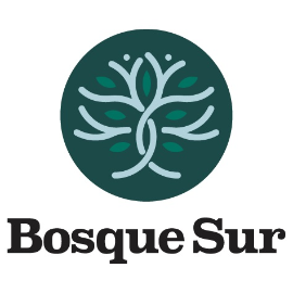 Manufacture Of Other Products Of Wood Companies  - Bosque Sur Srl