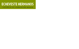 Energy Production From Wood Or Bio-fuels Companies  - Echeveste Hermanos S.L.