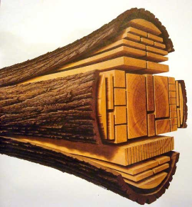 Wood Companies From Ukraine  - VIS-T LTD.