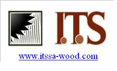 Forest Harvester - Logging Contractor Companies  - ITS WOOD SA